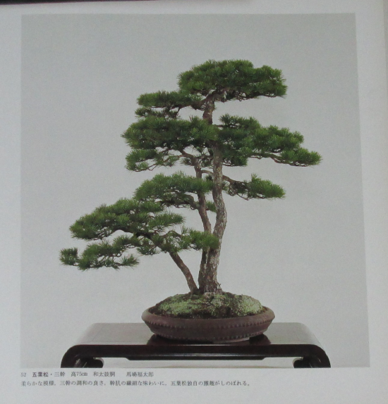 http://www.espritsdegoshin.fr/components/com_agora/img/members/2032/mini_sakufu-ten-2---1977-60.JPG