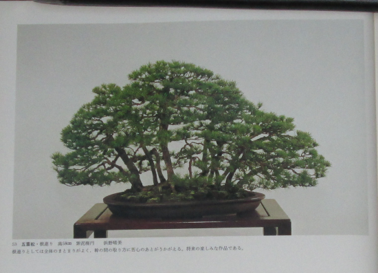 http://www.espritsdegoshin.fr/components/com_agora/img/members/2032/mini_sakufu-ten-2---1977-61.JPG