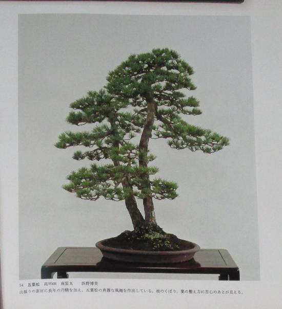 http://www.espritsdegoshin.fr/components/com_agora/img/members/2032/mini_sakufu-ten-2---1977-62.JPG
