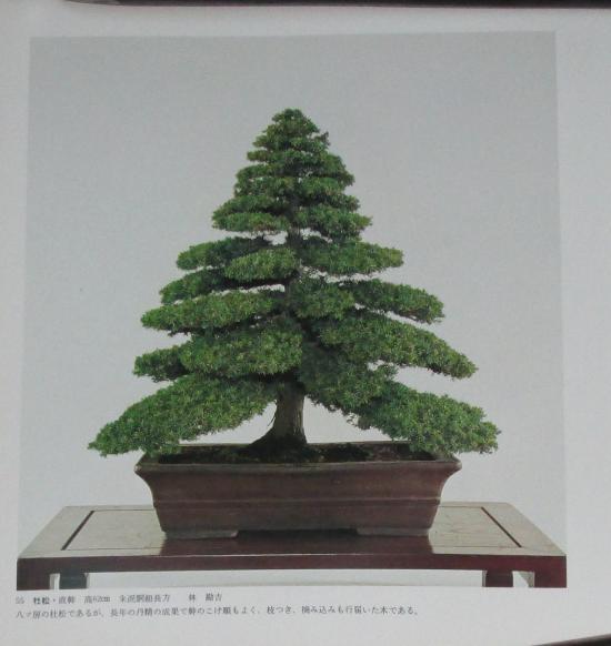 http://www.espritsdegoshin.fr/components/com_agora/img/members/2032/mini_sakufu-ten-2---1977-63.JPG