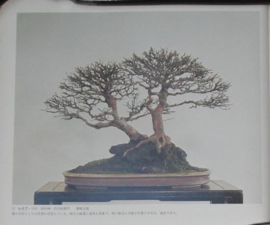 http://www.espritsdegoshin.fr/components/com_agora/img/members/2032/mini_sakufu-ten-2---1977-65.JPG