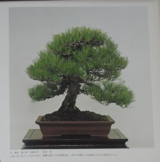 http://www.espritsdegoshin.fr/components/com_agora/img/members/2032/mini_sakufu-ten-2---1977-66.JPG