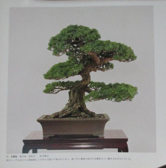 http://www.espritsdegoshin.fr/components/com_agora/img/members/2032/mini_sakufu-ten-2---1977-67.JPG