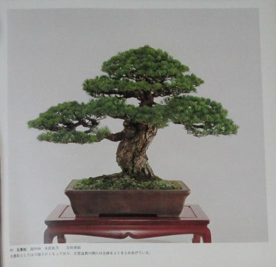 http://www.espritsdegoshin.fr/components/com_agora/img/members/2032/mini_sakufu-ten-2---1977-68.JPG