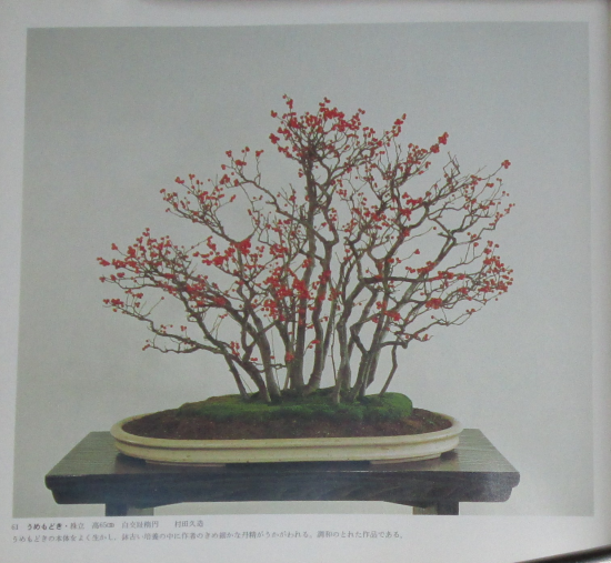 http://www.espritsdegoshin.fr/components/com_agora/img/members/2032/mini_sakufu-ten-2---1977-69.JPG