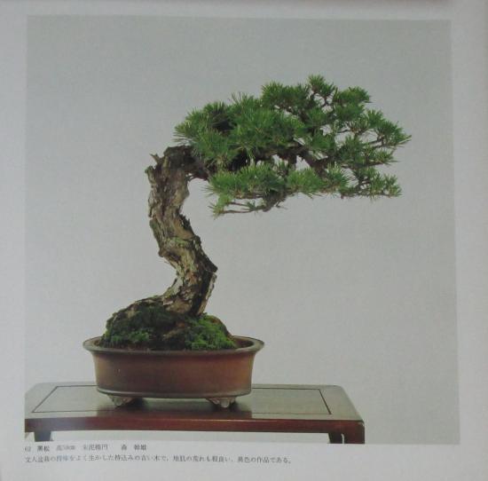 http://www.espritsdegoshin.fr/components/com_agora/img/members/2032/mini_sakufu-ten-2---1977-70.JPG
