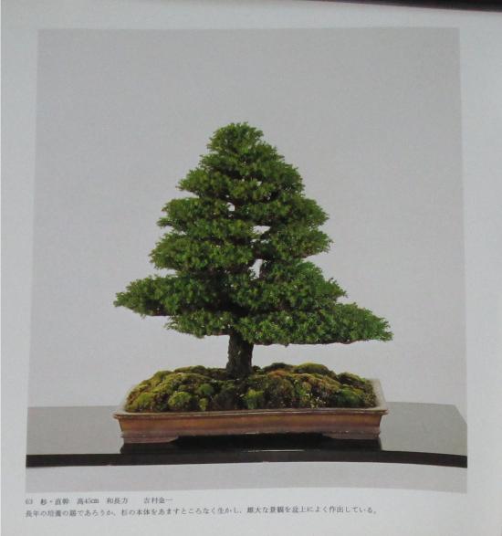 http://www.espritsdegoshin.fr/components/com_agora/img/members/2032/mini_sakufu-ten-2---1977-71.JPG