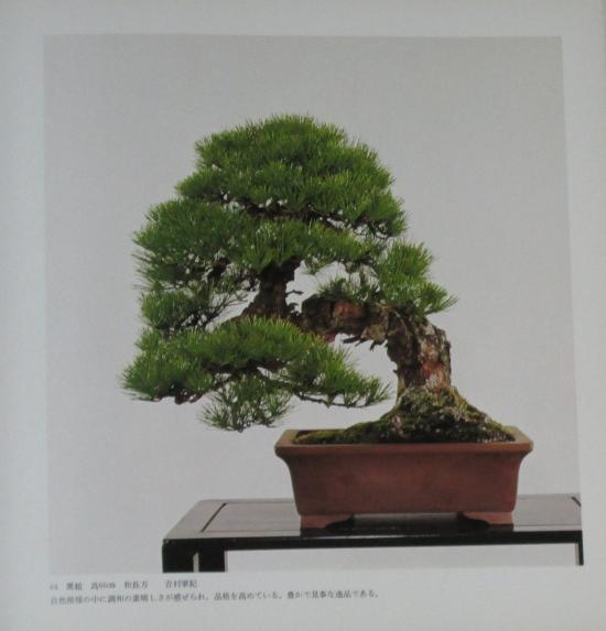 http://www.espritsdegoshin.fr/components/com_agora/img/members/2032/mini_sakufu-ten-2---1977-72.JPG