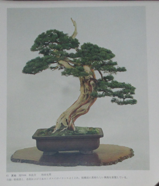 http://www.espritsdegoshin.fr/components/com_agora/img/members/2032/mini_sakufu-ten-2---1977-73.JPG