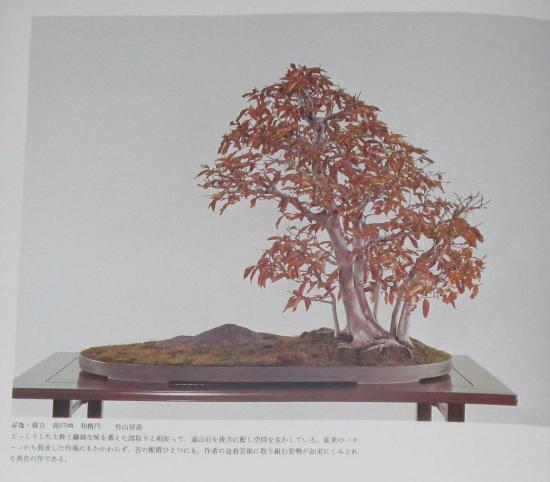 http://www.espritsdegoshin.fr/components/com_agora/img/members/2032/mini_sakufu-ten-2---1977-8.JPG