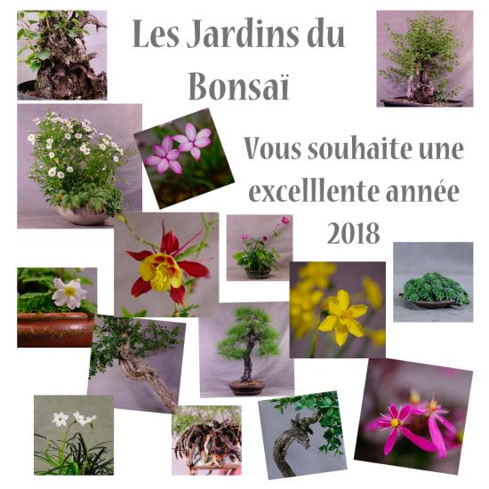 http://www.espritsdegoshin.fr/components/com_agora/img/members/2034/mini_2018-m.jpg