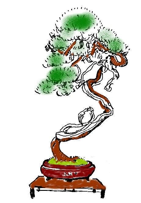 http://www.espritsdegoshin.fr/components/com_agora/img/members/2053/18022012-1237_sabine.jpg