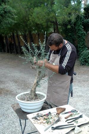 http://www.espritsdegoshin.fr/components/com_agora/img/members/2066/Sébastien-web.jpg