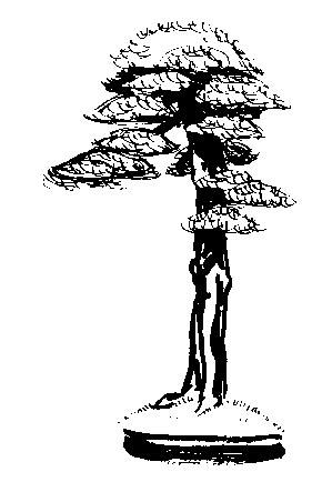 http://www.espritsdegoshin.fr/components/com_agora/img/members/21026_sans_titre_129.jpg