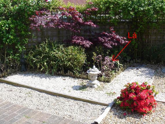 http://www.espritsdegoshin.fr/components/com_agora/img/members/2103/14072011-1906_jardin4.JPG