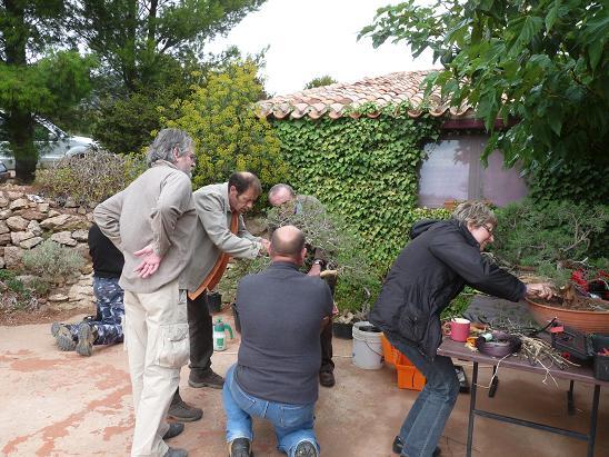 http://www.espritsdegoshin.fr/components/com_agora/img/members/2119/P1030569---Copie.JPG