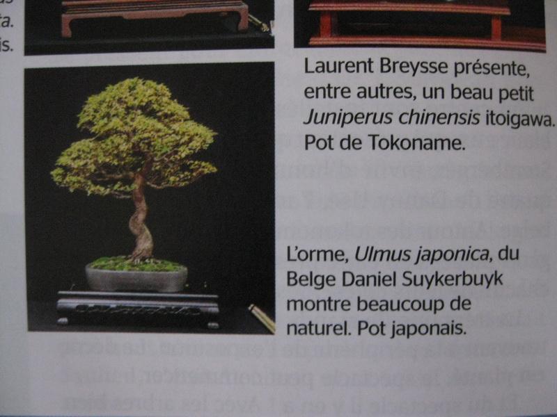 http://www.espritsdegoshin.fr/components/com_agora/img/members/2144/IMG-8959.JPG