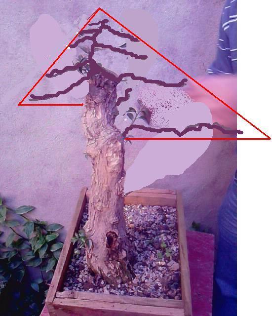 http://www.espritsdegoshin.fr/components/com_agora/img/members/2151/virtue10.jpg