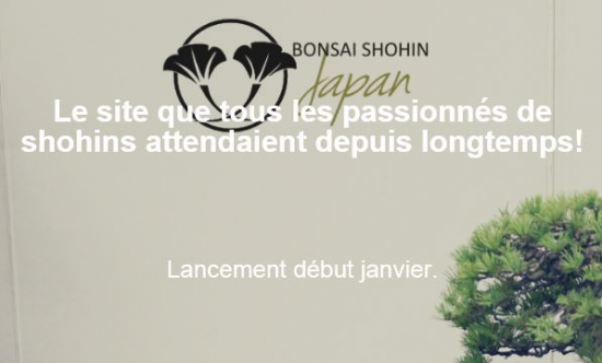 http://www.espritsdegoshin.fr/components/com_agora/img/members/2153/mini_-bonsai-shohin.JPG