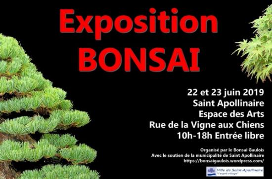 http://www.espritsdegoshin.fr/components/com_agora/img/members/2153/mini_Expo2019min.jpg