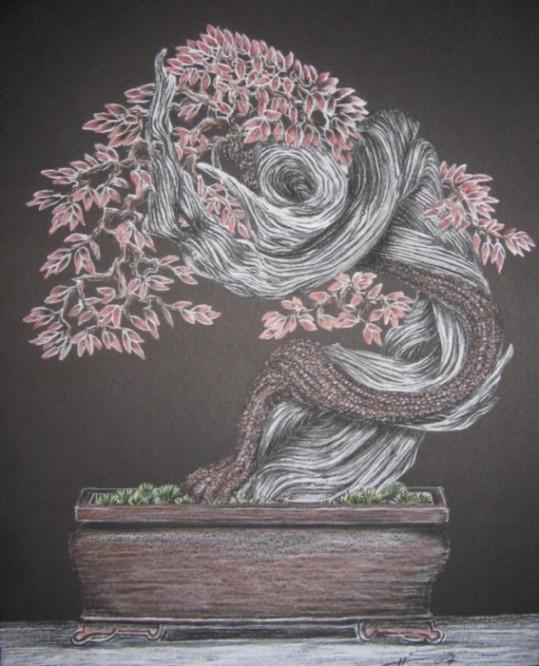 http://www.espritsdegoshin.fr/components/com_agora/img/members/2157/mini_82089-bonsai.jpg
