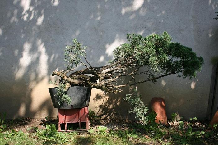 http://www.espritsdegoshin.fr/components/com_agora/img/members/2227/2012-001-A.JPG
