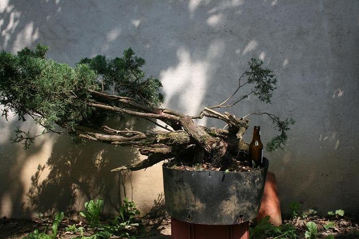 http://www.espritsdegoshin.fr/components/com_agora/img/members/2227/2012-008-E.JPG