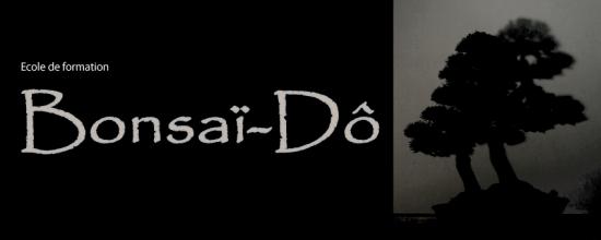http://www.espritsdegoshin.fr/components/com_agora/img/members/2285/mini_bonsai-do-article.jpg