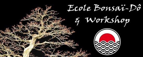 http://www.espritsdegoshin.fr/components/com_agora/img/members/2285/mini_slide-ecole-bonsai.jpg