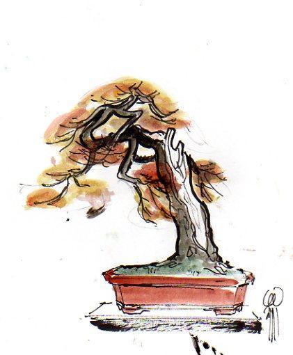 http://www.espritsdegoshin.fr/components/com_agora/img/members/2292/mini_4921.jpg