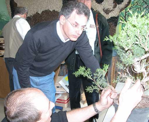 http://www.espritsdegoshin.fr/components/com_agora/img/members/28674_dscn2440_711.jpg
