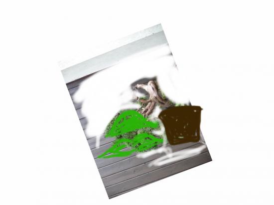 http://www.espritsdegoshin.fr/components/com_agora/img/members/2958/mini_17012015-1137_image.jpg