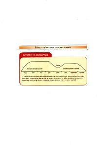 http://www.espritsdegoshin.fr/components/com_agora/img/members/3561/mini_20062013-0942_img012.jpg