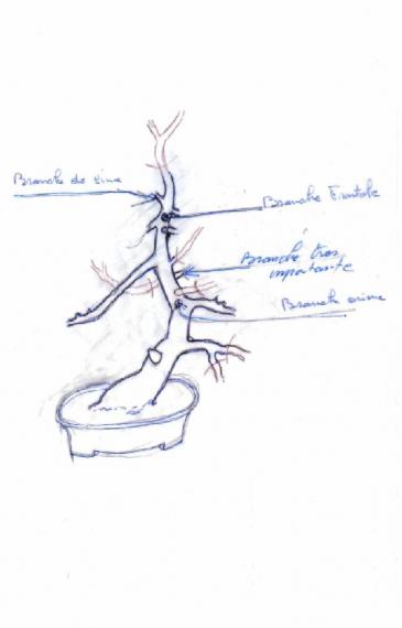 http://www.espritsdegoshin.fr/components/com_agora/img/members/36165_dessin_selec_bran_194.jpg_thumb