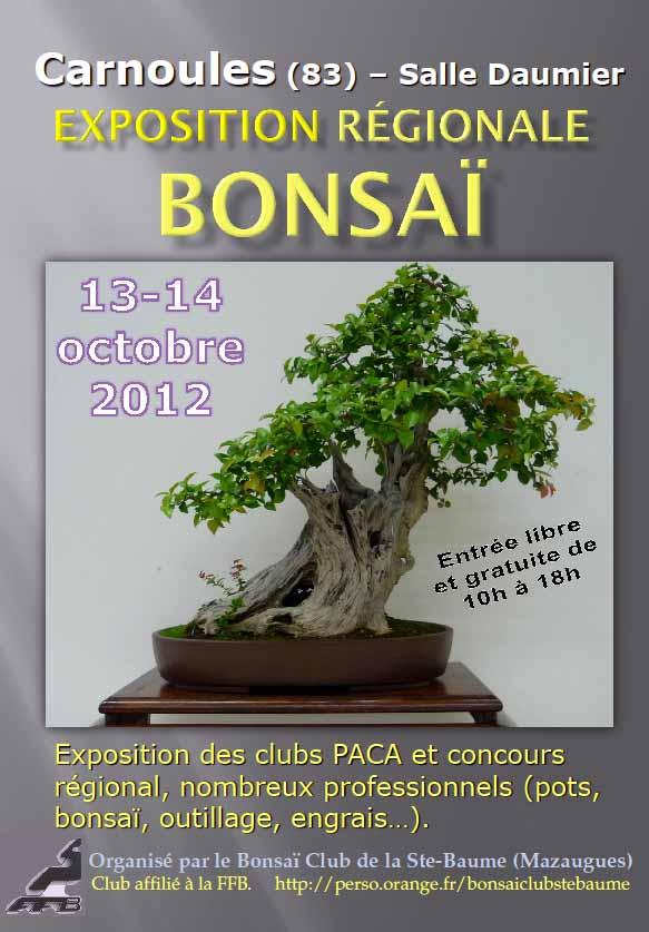 http://www.espritsdegoshin.fr/components/com_agora/img/members/3691/affiche-Carnoules.jpg
