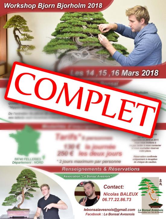 http://www.espritsdegoshin.fr/components/com_agora/img/members/3891/mini_Affiche-Bjorn-Bjorholm-2018-Complet-SD.jpg