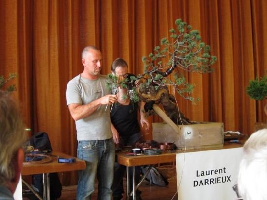 http://www.espritsdegoshin.fr/components/com_agora/img/members/4017/mini_Laurent-D.jpeg