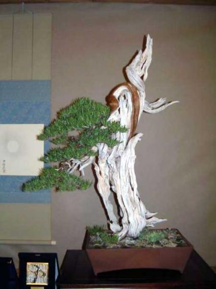 http://www.espritsdegoshin.fr/components/com_agora/img/members/40826_gallery_1509_106_86819_734_171.jpg_thumb