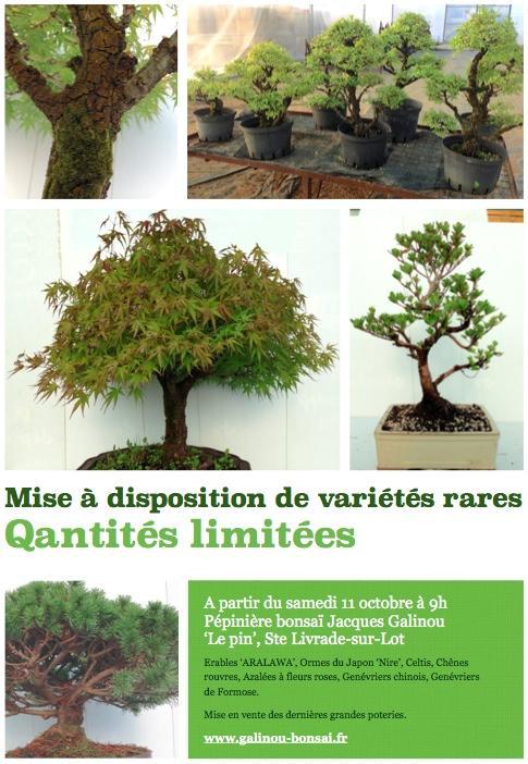 http://www.espritsdegoshin.fr/components/com_agora/img/members/4117/mini_annonce-vente-speciale-octobre.jpg