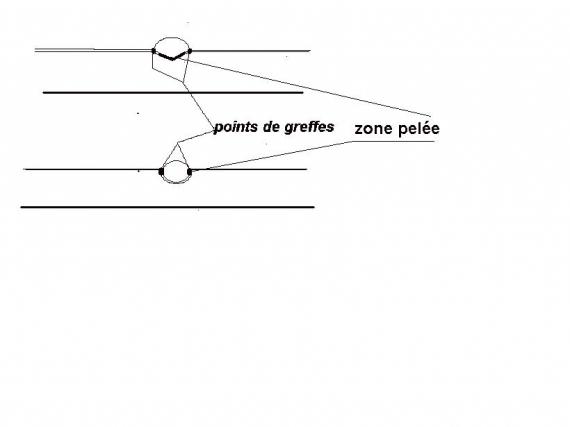 http://www.espritsdegoshin.fr/components/com_agora/img/members/41326_dessins_870.jpg_thumb