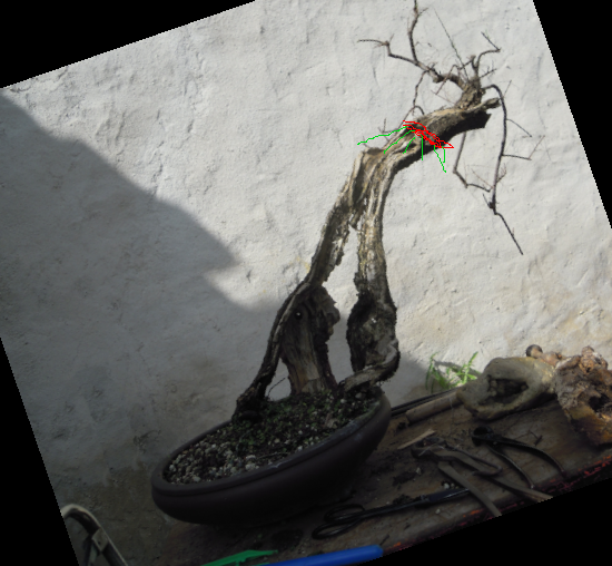 http://www.espritsdegoshin.fr/components/com_agora/img/members/4290/mini_22042021-1024_mini-Tamarix-prothèse-Sacal2.png