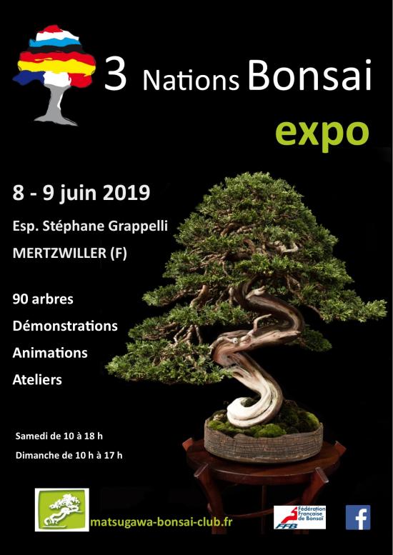 http://www.espritsdegoshin.fr/components/com_agora/img/members/4315/mini_affiche-3-nations-bonsai-2019-A4-V12-18.jpg