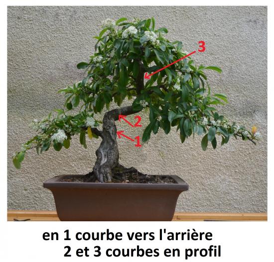 http://www.espritsdegoshin.fr/components/com_agora/img/members/4350/mini_DSC-0488---Copie---Copie.JPG