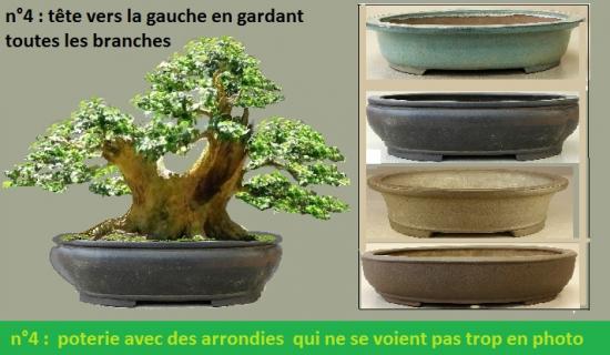 http://www.espritsdegoshin.fr/components/com_agora/img/members/4350/mini_pierre-p---Copie---Copie-2.jpg