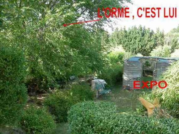http://www.espritsdegoshin.fr/components/com_agora/img/members/44043_expo4_457.jpg_thumb