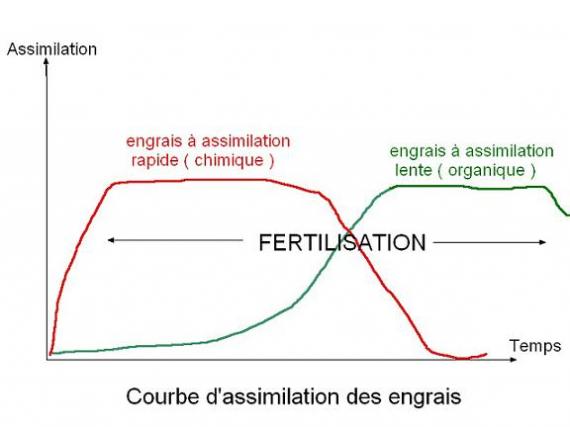 http://www.espritsdegoshin.fr/components/com_agora/img/members/48361_engrais_153_287.jpg_thumb
