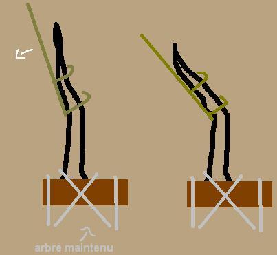 http://www.espritsdegoshin.fr/components/com_agora/img/members/53329_barre.JPG