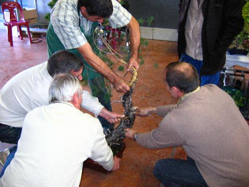 http://www.espritsdegoshin.fr/components/com_agora/img/members/53737_8.jpg