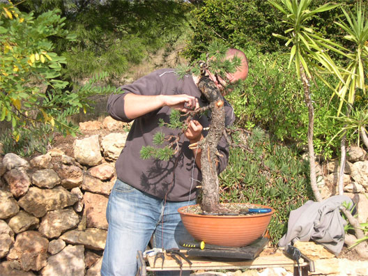 http://www.espritsdegoshin.fr/components/com_agora/img/members/55347_Jérôme-travaille.jpg
