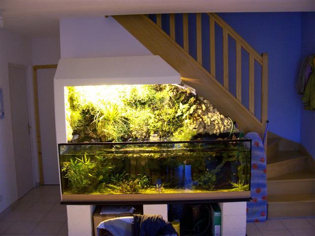 http://www.espritsdegoshin.fr/components/com_agora/img/members/55435_aquarium.JPG